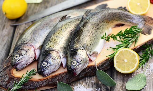 venta de pescados online