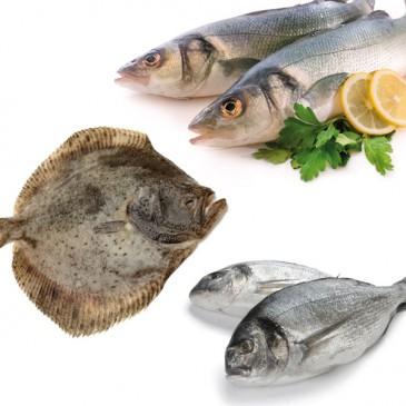 Pack Especial pescado Cultivo