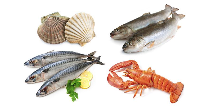 comprar pescado fresco online